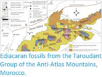 http://sciencythoughts.blogspot.com/2019/02/ediacaran-fossils-from-taroudant-group.html
