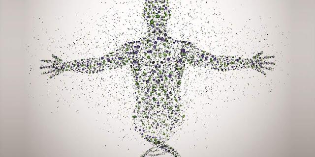 Epigenetica y biologia