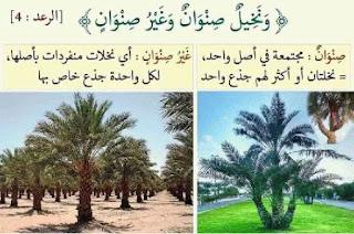 لفهم آيات القرآن الكريم 7.jpg