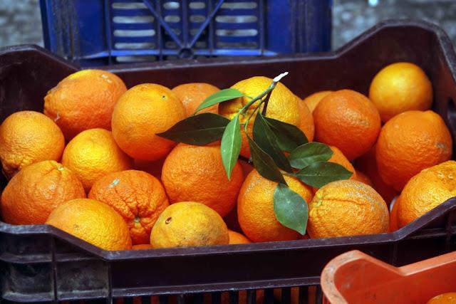 Συνελήφθησαν 3 γυναίκες στην Αργολίδα που πήγαν να κλέψουν 3,5 τόνους πορτοκάλια