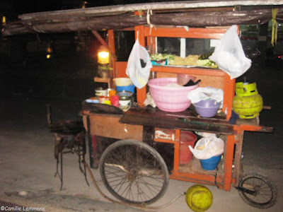 Sanur, Bali, Indonesia, Nasi Goreng on wheels the ingredients