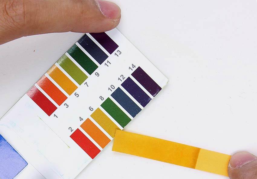 определение уровня кислотности мочи с помощью тест-полосок
