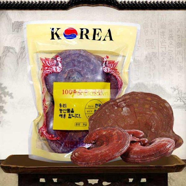 Giá bán nấm linh chi đỏ hiện nay
