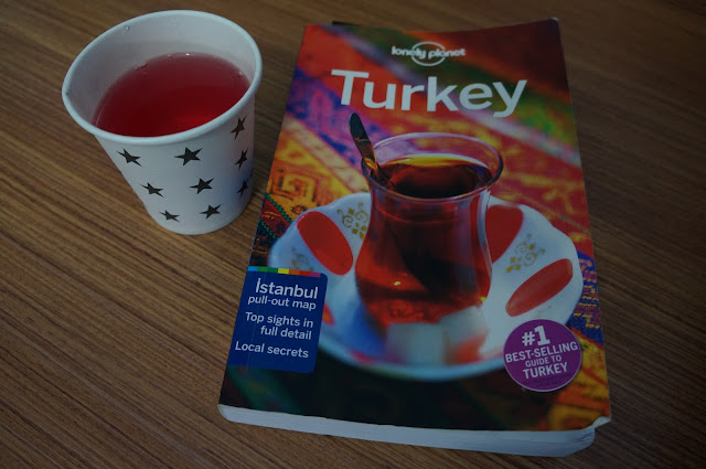 guia Lonely Planet Turkey