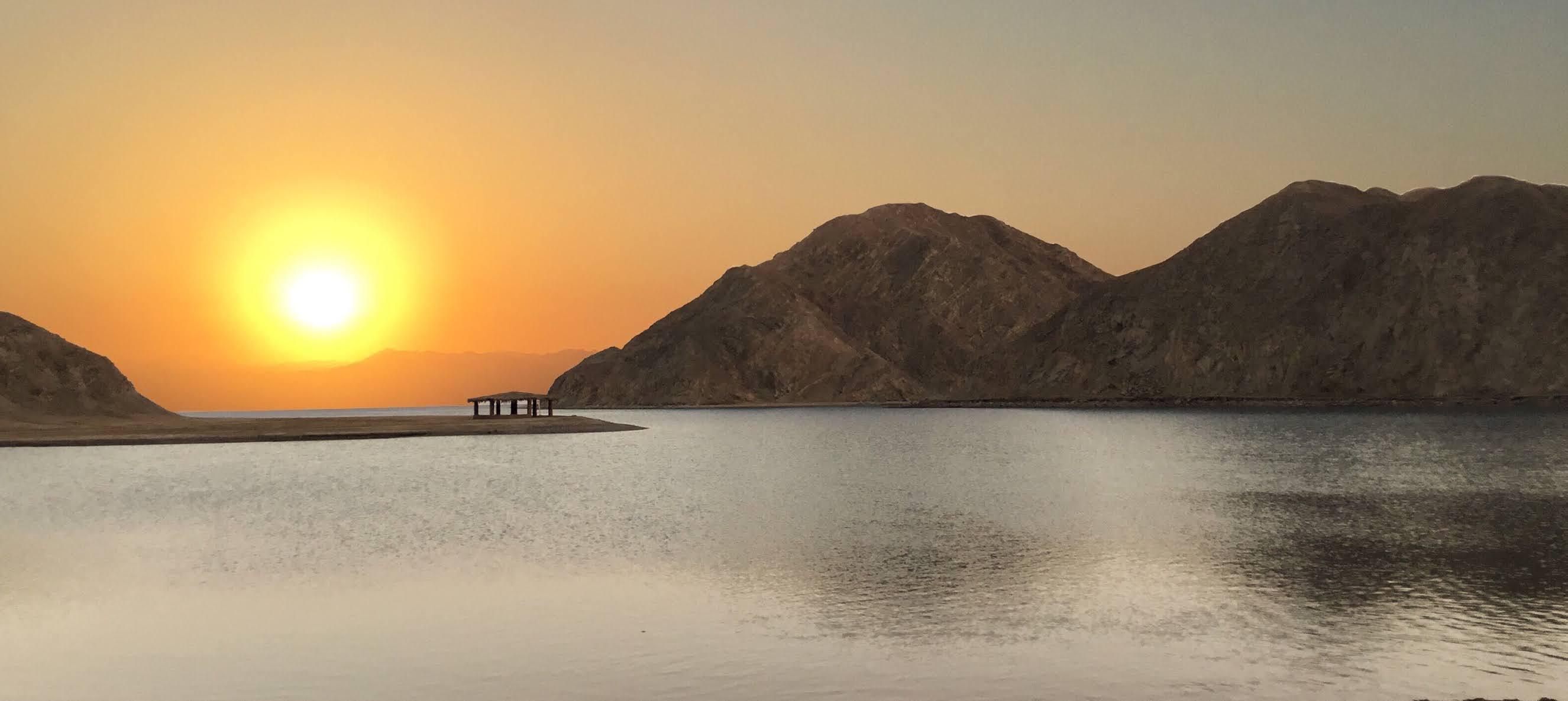 السيسي يوجه بمواصلة مشروعات استصلاح الأراضي في سيناء