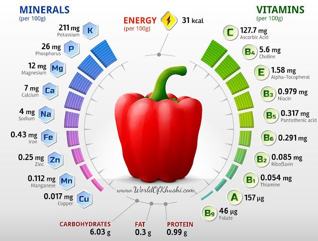 Capsicum is Fruit Or Vegetable ? | Surprising Benefits of Capsicum