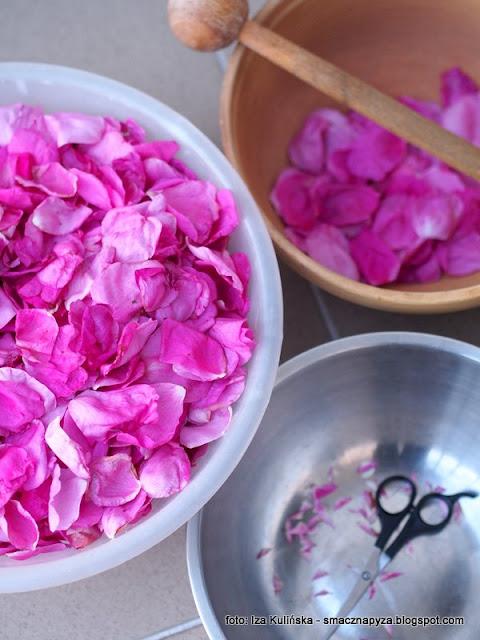 obetnij konce platkow, gorzkie koncowki, platki roz, kwiaty roz, konfiture z platkow rozy, konfitura rozana, domowe konfitury