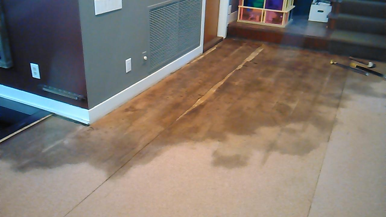 Water Damaged Warped Hardwood Floors