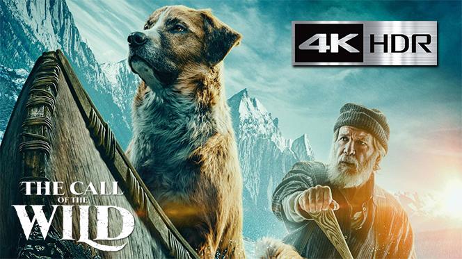 El llamado salvaje (2020) 4K UHD [HDR] Latino-Ingles