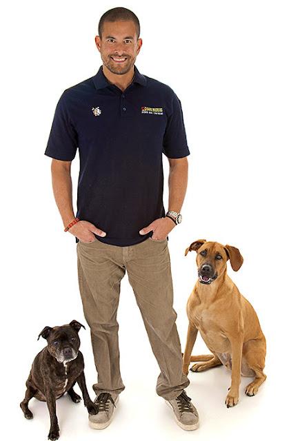 Top 7 Dog Training School Hidden Gems in San Diego Area
