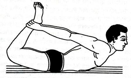 dhanurasana stretches, dhanurasana benefits, dhanurasana steps, dhanurasana preparatory poses, dhanurasana in english, bow pose for beginners, bow pose benefits, bow pose, how to do dhanurasana yoga, how to do bow pose yoga, dhanurasana, precautions of dhanurasana, dhanurasana benefits in english, precautions of bow pose, benefits of dhanurasana, benefits of bow pose, steps of dhanurasana, steps of bow pose