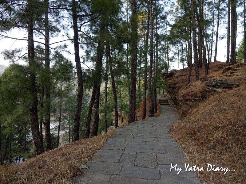 Path of the Lakhudiyar caves in Almora Uttarakhand