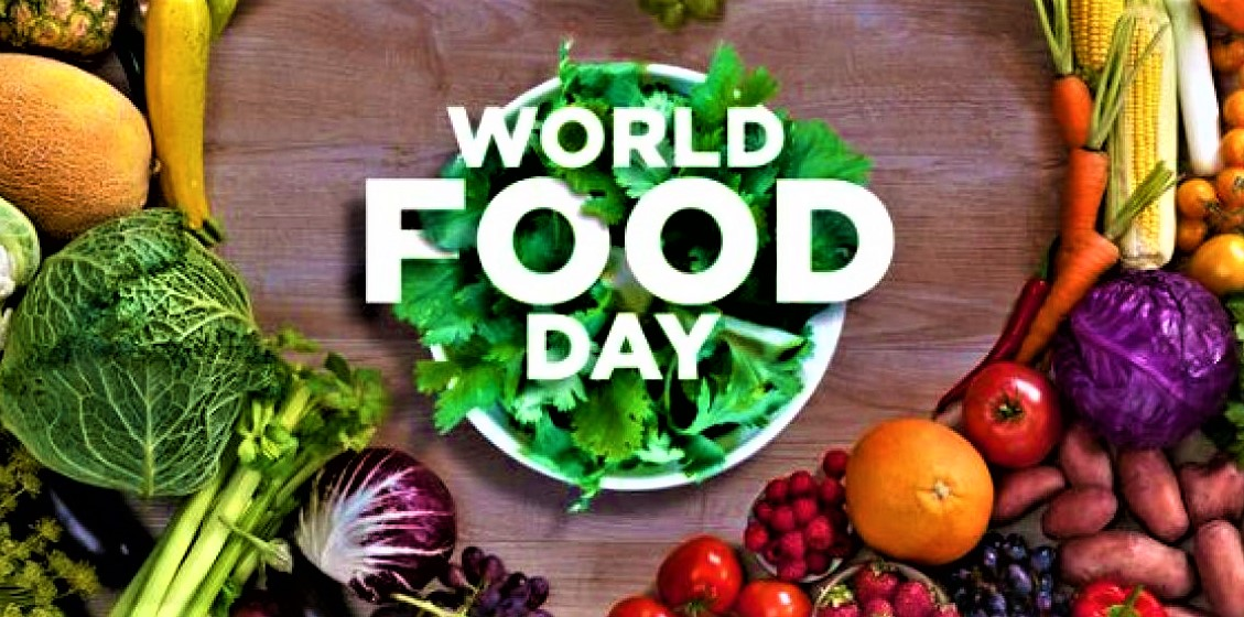 Food is one among the essential needs of the citizens of a rustic . Ensuring food security, along side heating and a couple of other issues round the world, is now one among the important goals. Today is October 16 World Food Day 2020