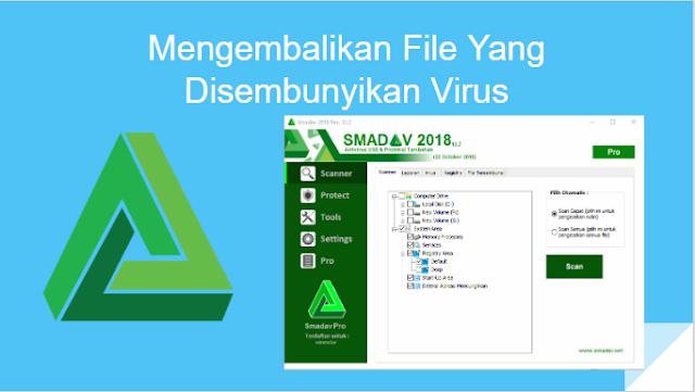 Cara Mudah Mengembalikan File Yang Disembunyikan Virus