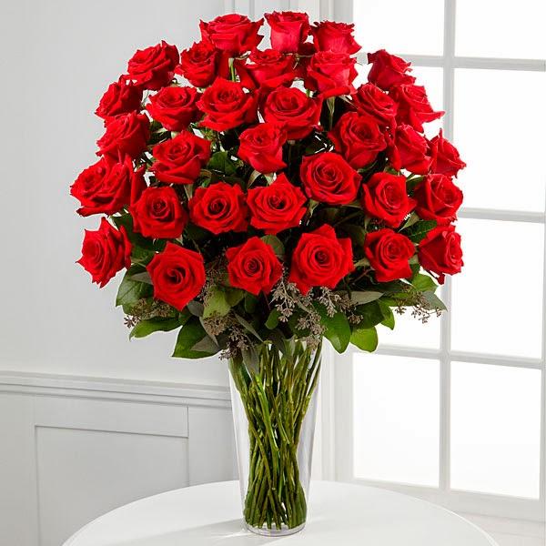 20 Gambar Foto Bunga Mawar Merah  Ayeeycom