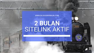Pengalaman Blogger dapat Sitelink dari Google dalam waktu 2 bulan