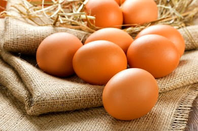 Top 11 Health Benefits of Eating Eggs
