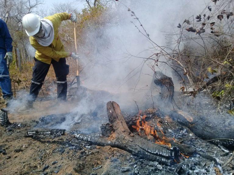 Voluntario realiza tareas de rescate y sofocamiento de las llamas en Roboré / JERSON BRAVO / BOMBERO
