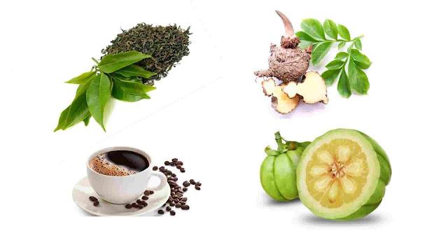 ٦ أعشاب  تساعدك في خسارة وزنك الزائد