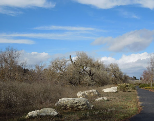 """""""Larry"""" Moore Park in Paso Robles: A Photographic Review - South Entrance"""