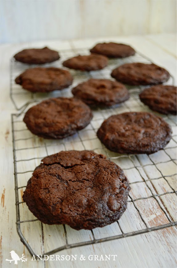 Mixed Berry Chocolate Cookies from www.andersonandgrant.com