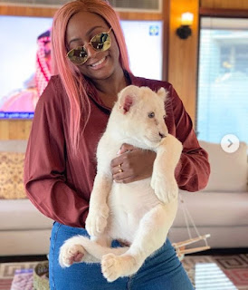 Dj Cuppy gets a cub as pet, hopes it turns into a beautiful Lion 'Photos'