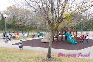 1Y茉莉公園野餐生日趴