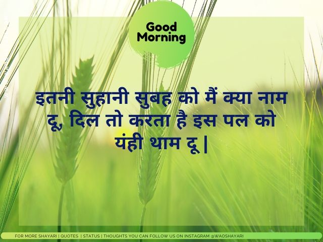good morning shayari in hindi photo, good morning shayari download image