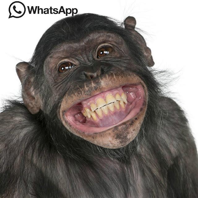 imagen de risa