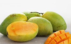 Benefits of mango fruit efficacy for health and beauty