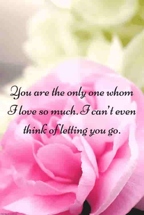 luv quote for sweetheart with rose picture