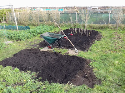 Allotment Growing - Compost