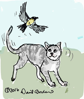 drawing of a gray cat watching a yellow and black bird flying across the yard by David Borden, copyright 2016