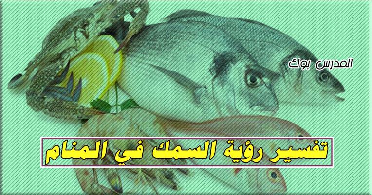 تفسير حلم السمك في المنام لابن سيرين تعرف رؤية السمك الكبير والنيء للمتزوجة لكبار علماء تفسير