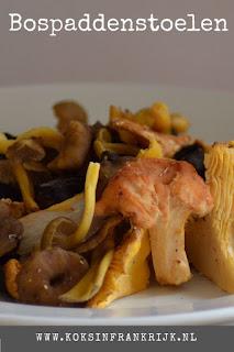 Zelf paddenstoelen zoeken in het bos en daar ragout van maken. Zie hier het recept voor bospaddenstoelenragout.