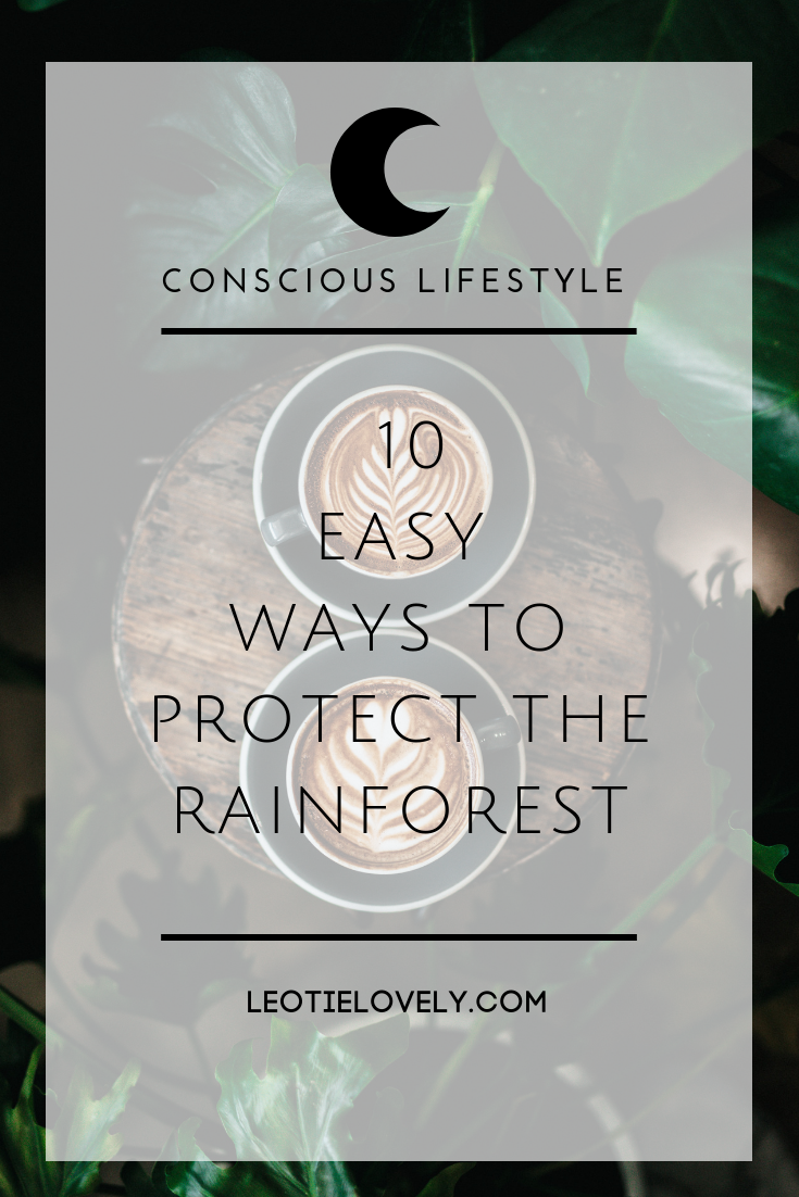 rainforest, climate action, conscious living, green living, follow the frog, sustainable living, sustainable lifestyle blogger, green lifestyle blogger, ethical lifestyle blogger, rainforest alliance, leotie lovely, ethical writer, ethical influencer, green influencer, holly rose, fairtrade, fairtrade coffee, palm oil, palm oil free, seventh generation