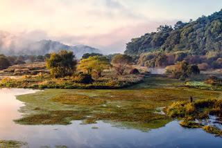 Pemandangan Upo Marsh