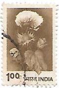 Selo Flor de Algodão
