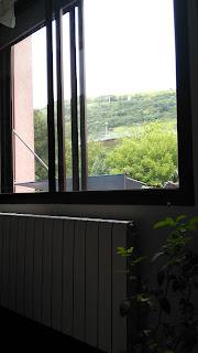 sencillas y relajantes vistas desde mi ventana