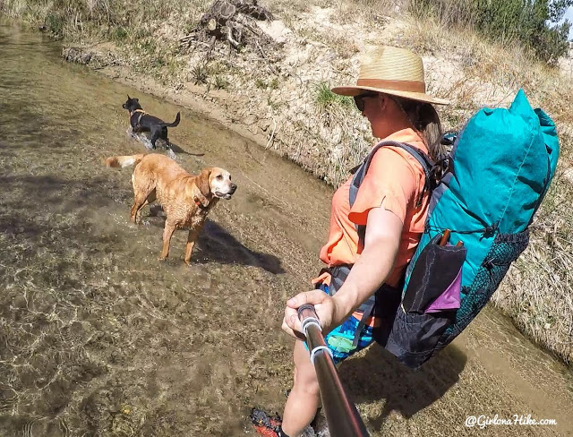 Backpacking the Escalante River Trail