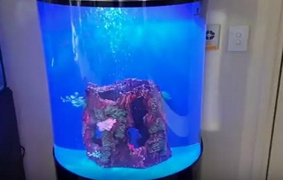 How to setup air pump & air stone in aquarium