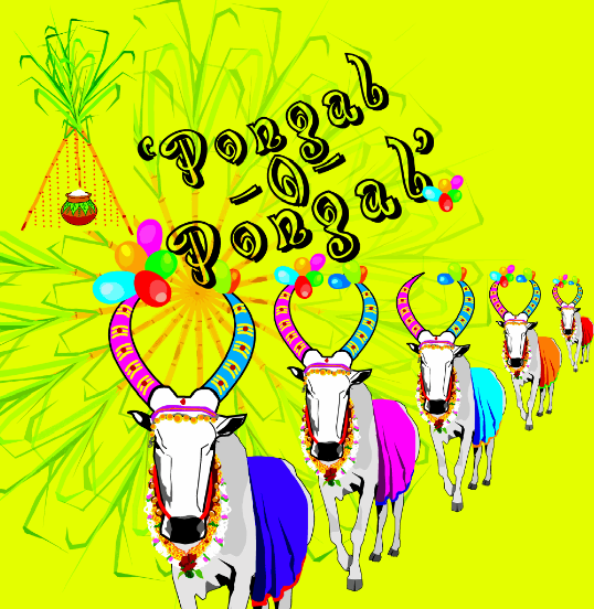 {*HD*} Happy Pongal Wishes, Greetings, Quotes, Messages, SMS, Sayings, And Pictures
