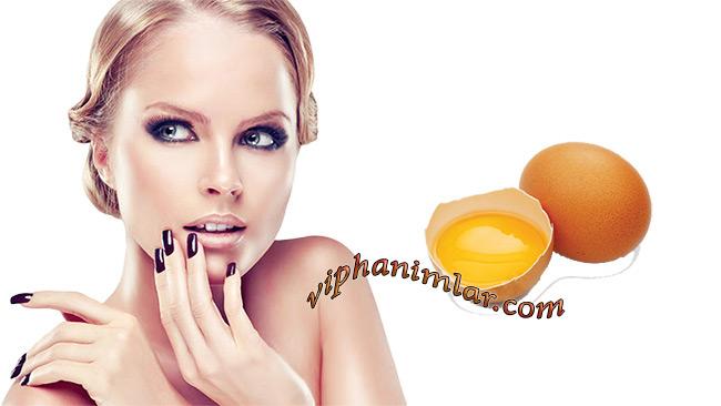 Yumurta İle Güzellik Sırları - www.viphanimlar.com