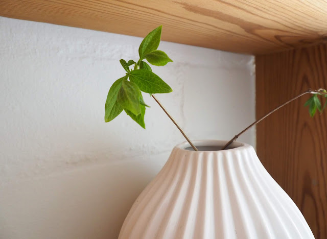 hylly, seinahylly, lokerikkohylly, puuhylly, vanha seinahylly, valkoinen vaasi, valkoinen tiiliseina