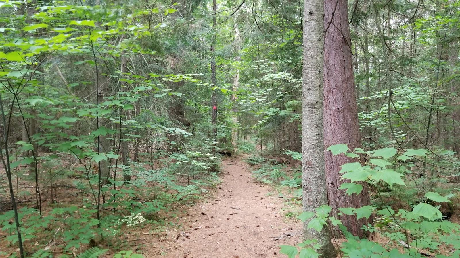 NJ/NY Hikes : August 2019