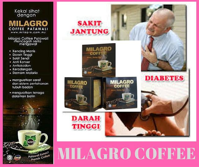 POKOK PATAWALI HASILKAN MILAGRO COFFEE PATAWALI
