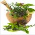 تحميل تطبيق موسوعة الاعشاب الطبية للاندرويد مجاناً  Medicinal Herbs.APK