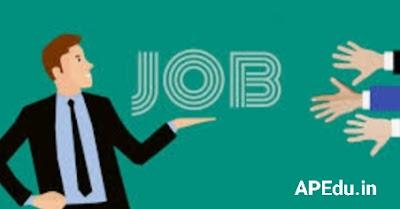 NTA DU Recruitment 2021@1145 Vacancies