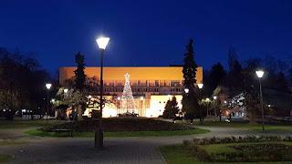 Vrnjacki park nocu