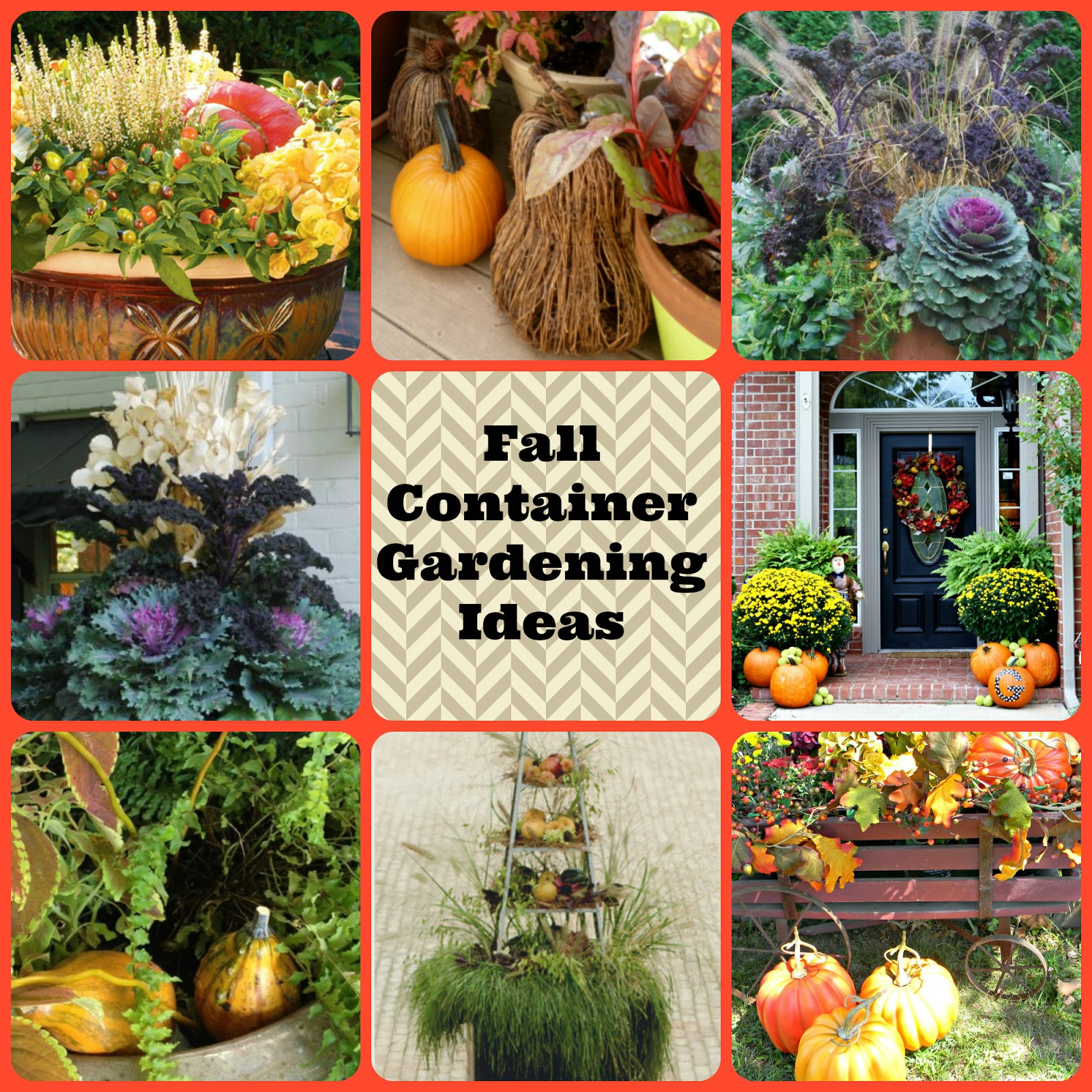 Dorothy Sue And Millie B's Too: Fall Container Gardening